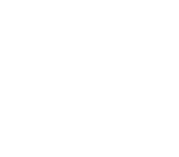 Microsoft Partner